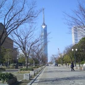 福岡タワー等
